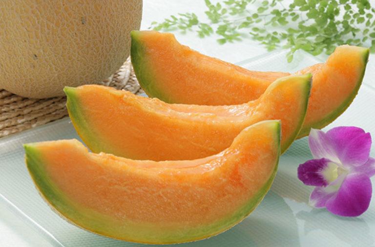 メロン / Melon